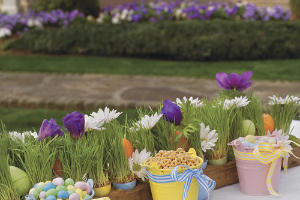 Egg-cellent Decorating Ideas