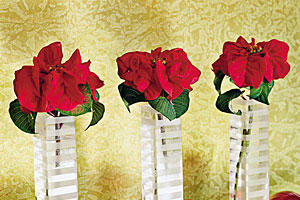 Mantel Poinsettias