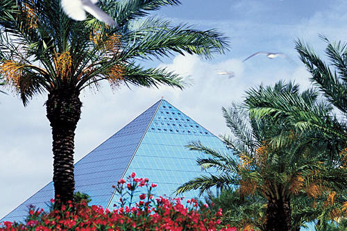 picture of pyramid at moody gardens, galveston, texas