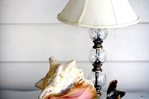 Conch Shell with Lamp