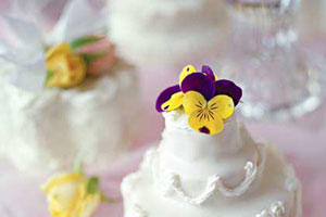 Small Tiered Cluster Cakes