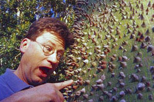 Home Gardening Tips: Learn from those Mistakes