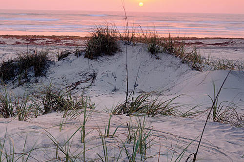Secluded Southern Beach Vacations: Padre Island National Seashore