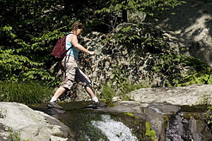 Shenandoah National Park Hiking and Cabins: Moderate Hike