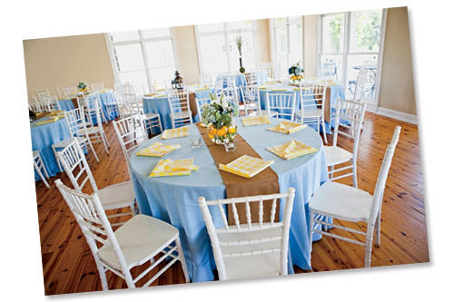Blue and Yellow Reception