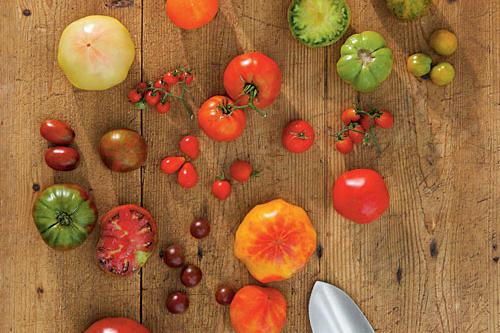 Grow an Assortment of Tomatoes
