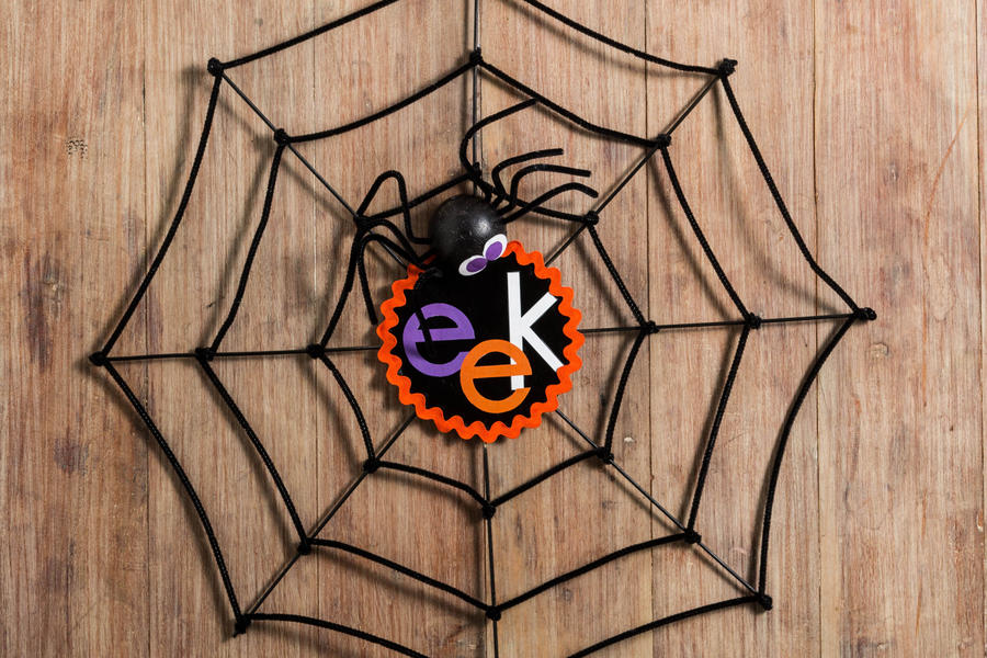 Halloween Spiderweb Decoration