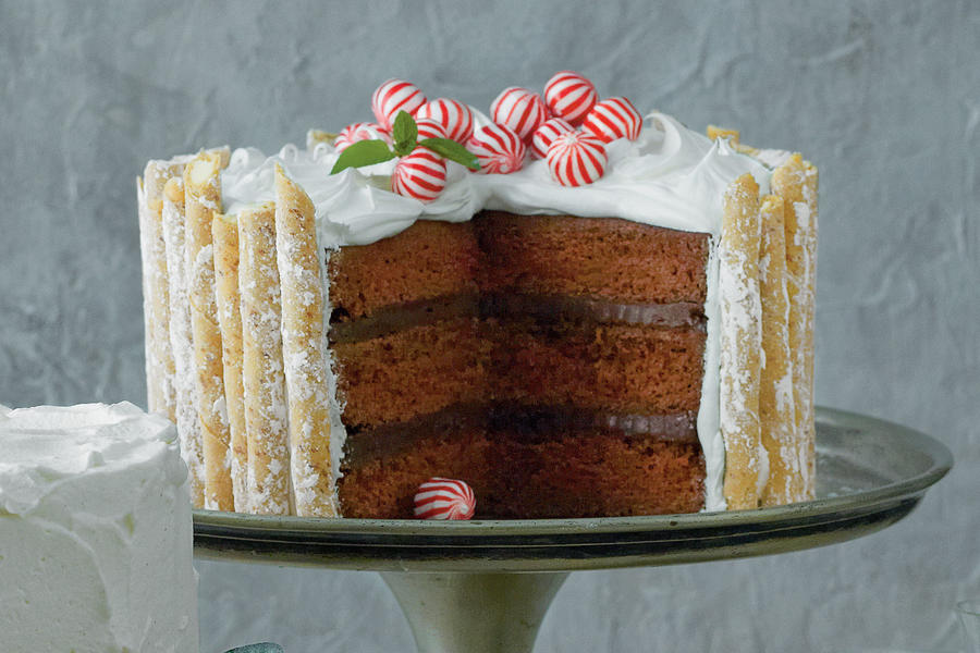 Peppermint-Hot Chocolate Cake Recipe