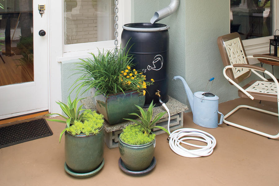 Ways to Save Water in Your Yard: Tie House to Landscape