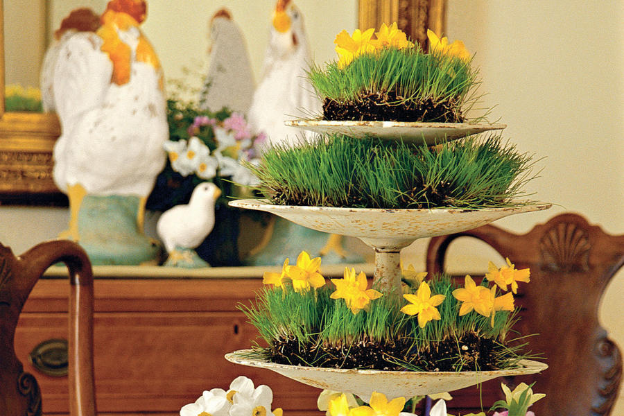 Wheatgrass and Flowers Centerpiece