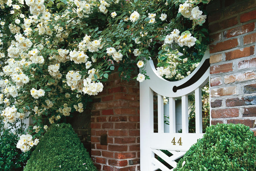 Rose Covered Garden Gate