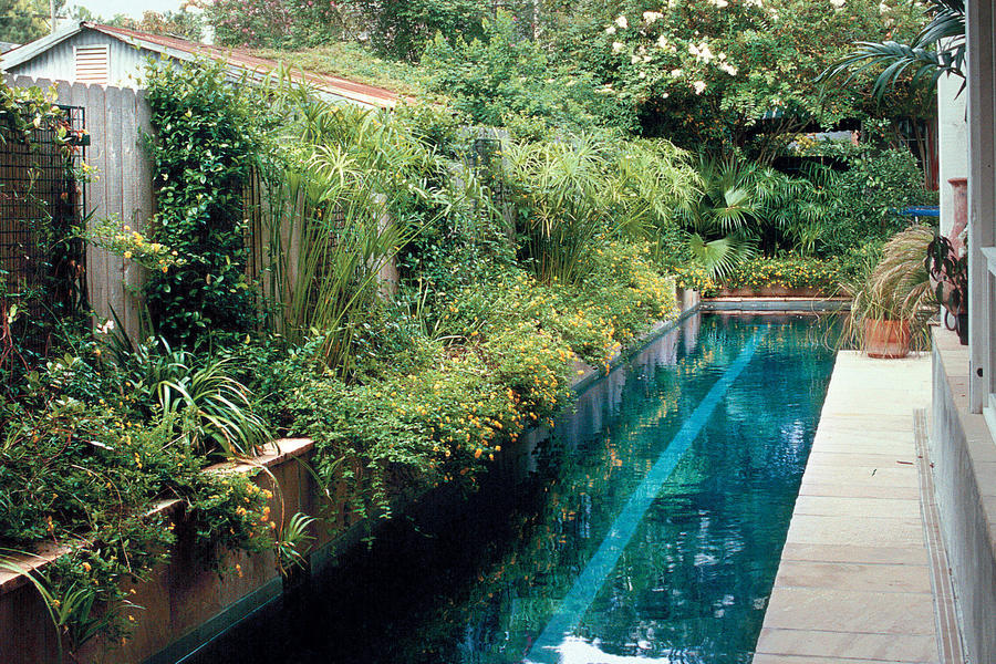 Urban Pool Retreat Sparkling Pools Southern Living
