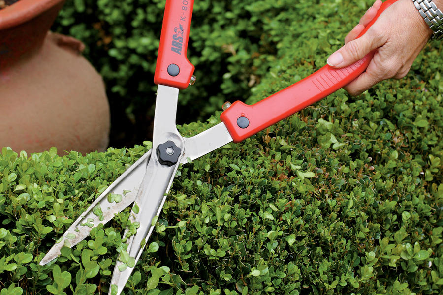 Choose the right pruners southern living for Garden tools best quality