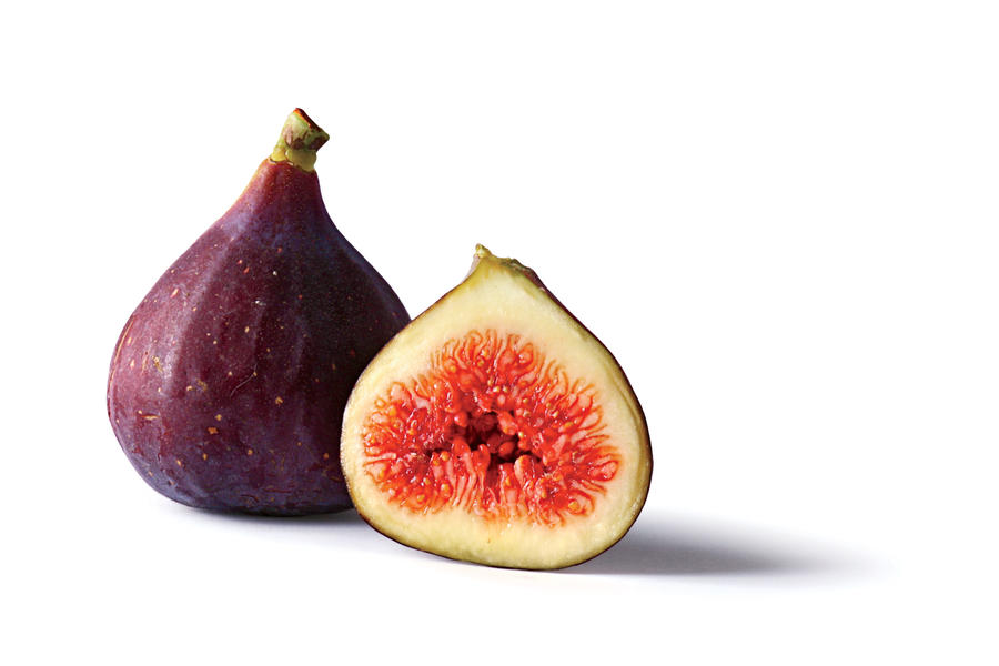'Papa John' - Fig Fruit Varieties - Southern Living Raising Chickens