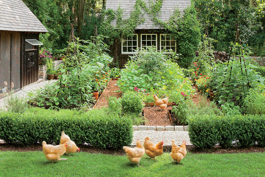 Dream garden with a chicken coop the south 39 s best for Southern living landscape design