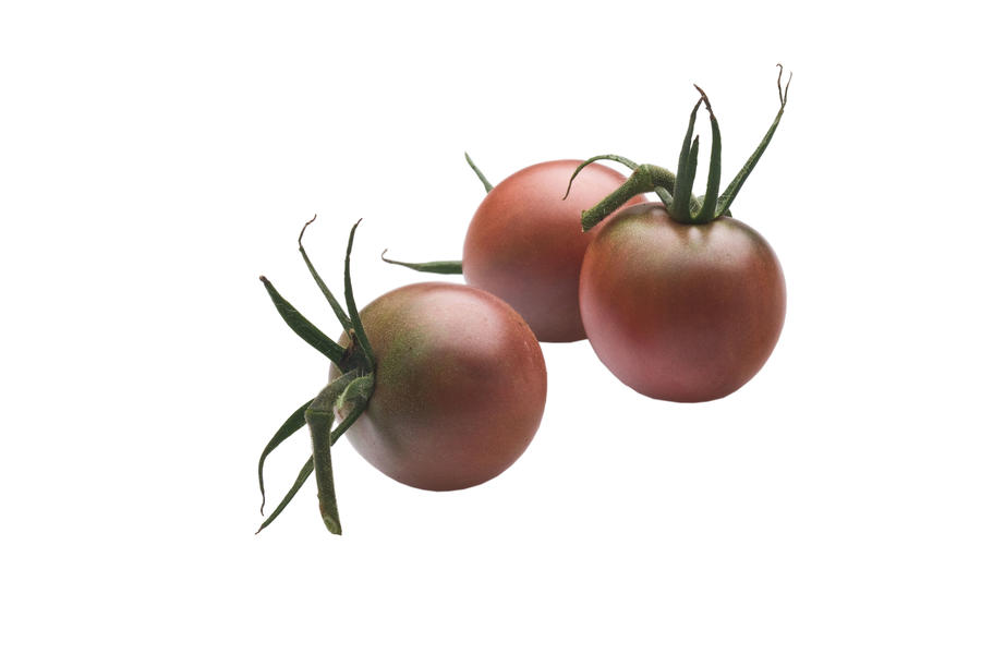 Growing Tiny, Tasty Tomatoes: 'Chocolate Cherry'