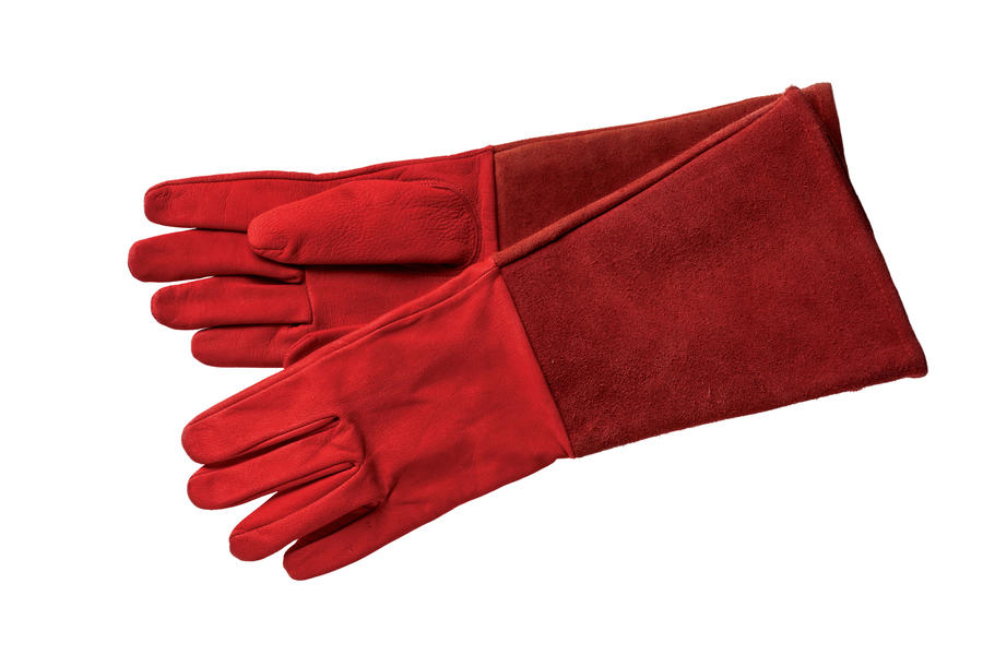 Rose Gauntlet Gloves