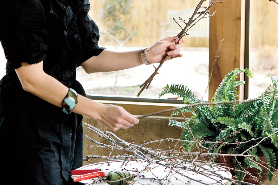 Winter Flowers: Condition Stems