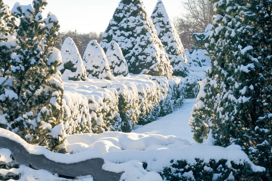 Topiary Gardens to Visit