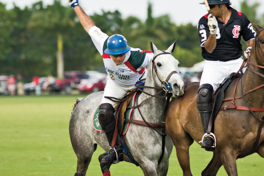 picture of men playing polo in palm beach