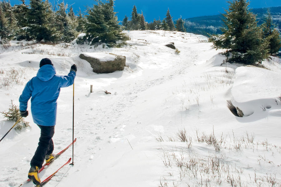 Cross-Country Ski in Canaan Valley, West Virginia