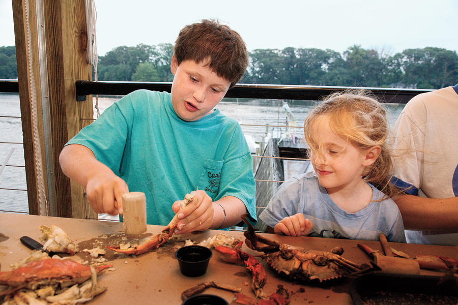 little boy enjoying fresh maryland blue crabs at an authentic crab house
