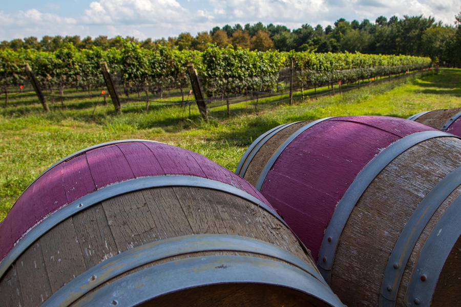 Virginia is for Wine Lovers