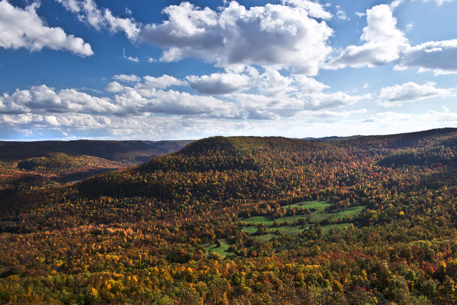 Scenic Byway 7 Fall Color