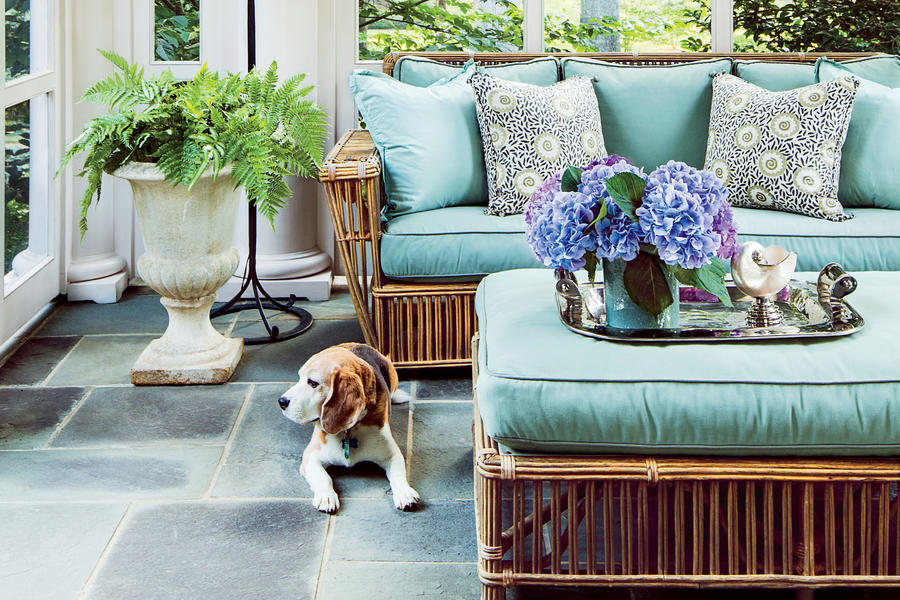 Jane Schwab porch with Beagle