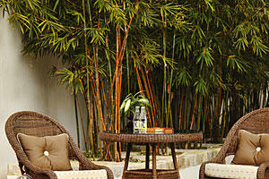 outdoor furniture collection slideshow image 1