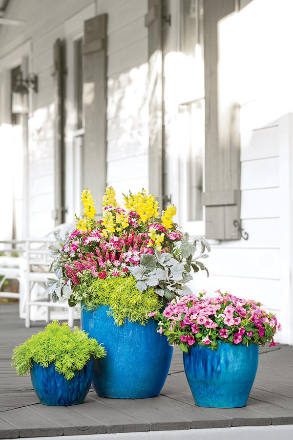 3 easy ways to increase home curb appeal with a friendly Container plant ideas front door