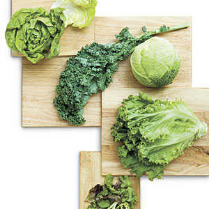 Grow Your Own Lettuce
