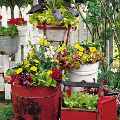 Spectacular Container Gardens Lettuce And Ornamentals Spectacular Container Gardening Ideas