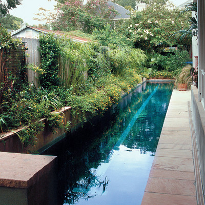 Urban Pool Retreat