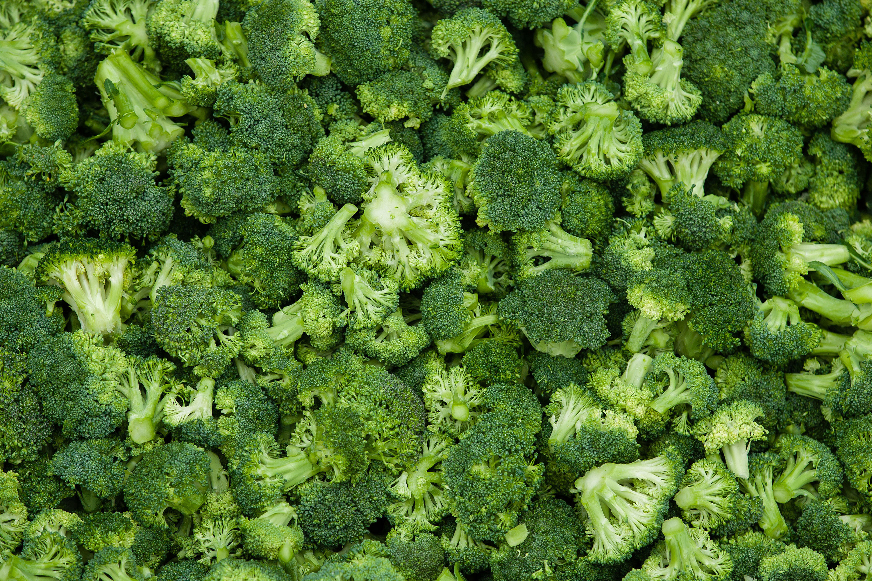 Want To Age Well? Eat Your Broccoli.
