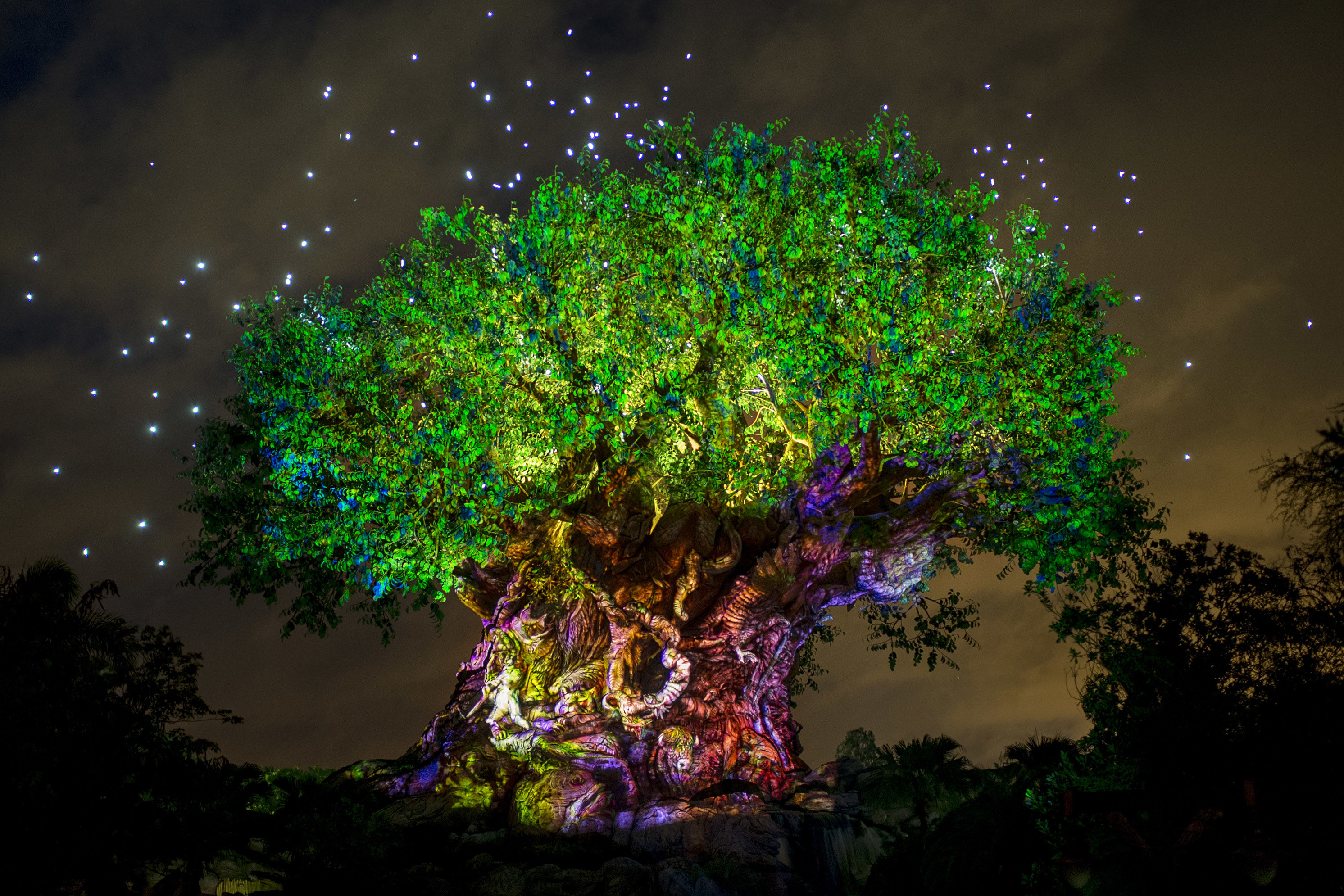 Can You Guess How Many Animals Are Carved onto Disney World's Tree of Life?