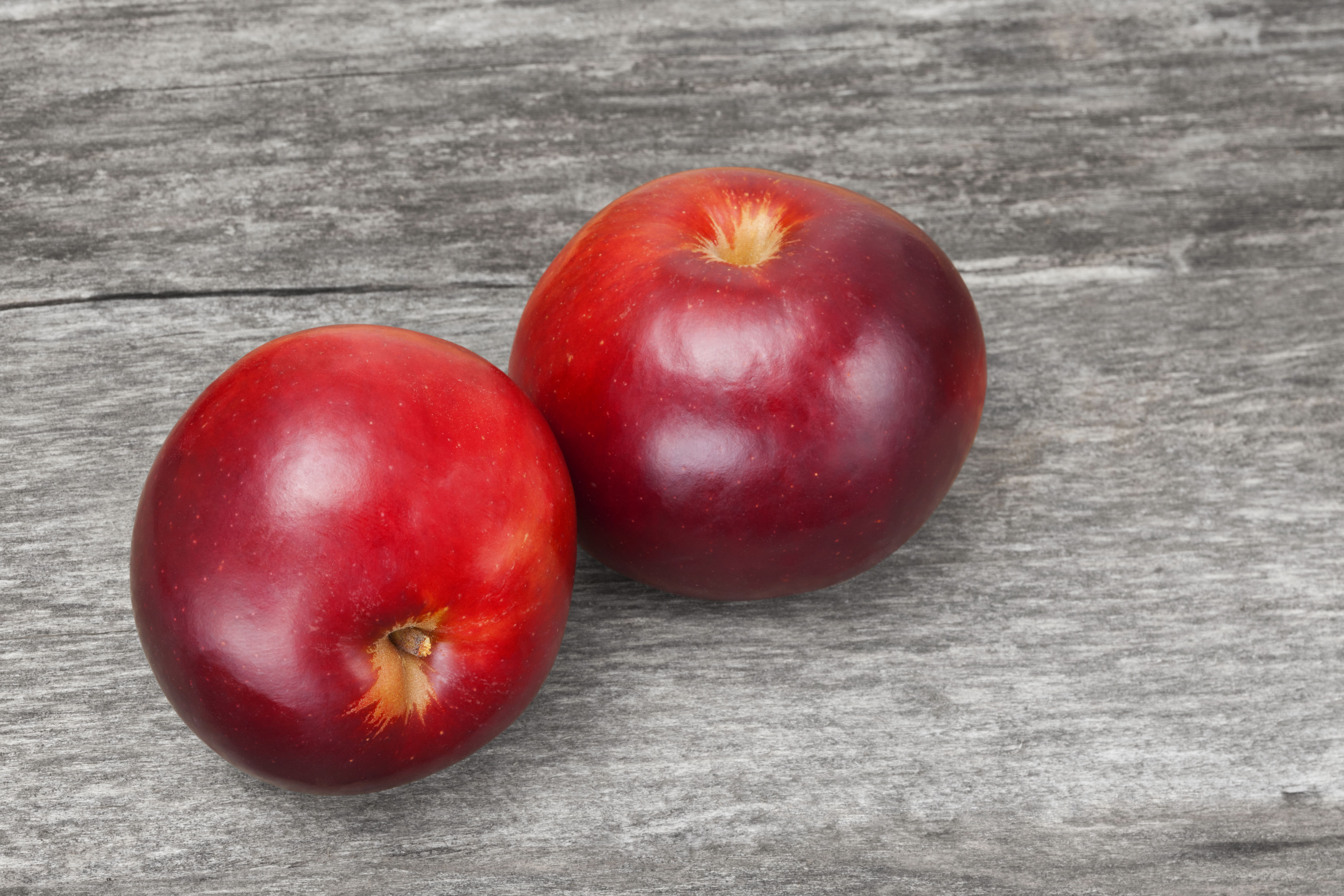 The Arkansas Black Apple is the Rare Fruit Every Southerner Must Try