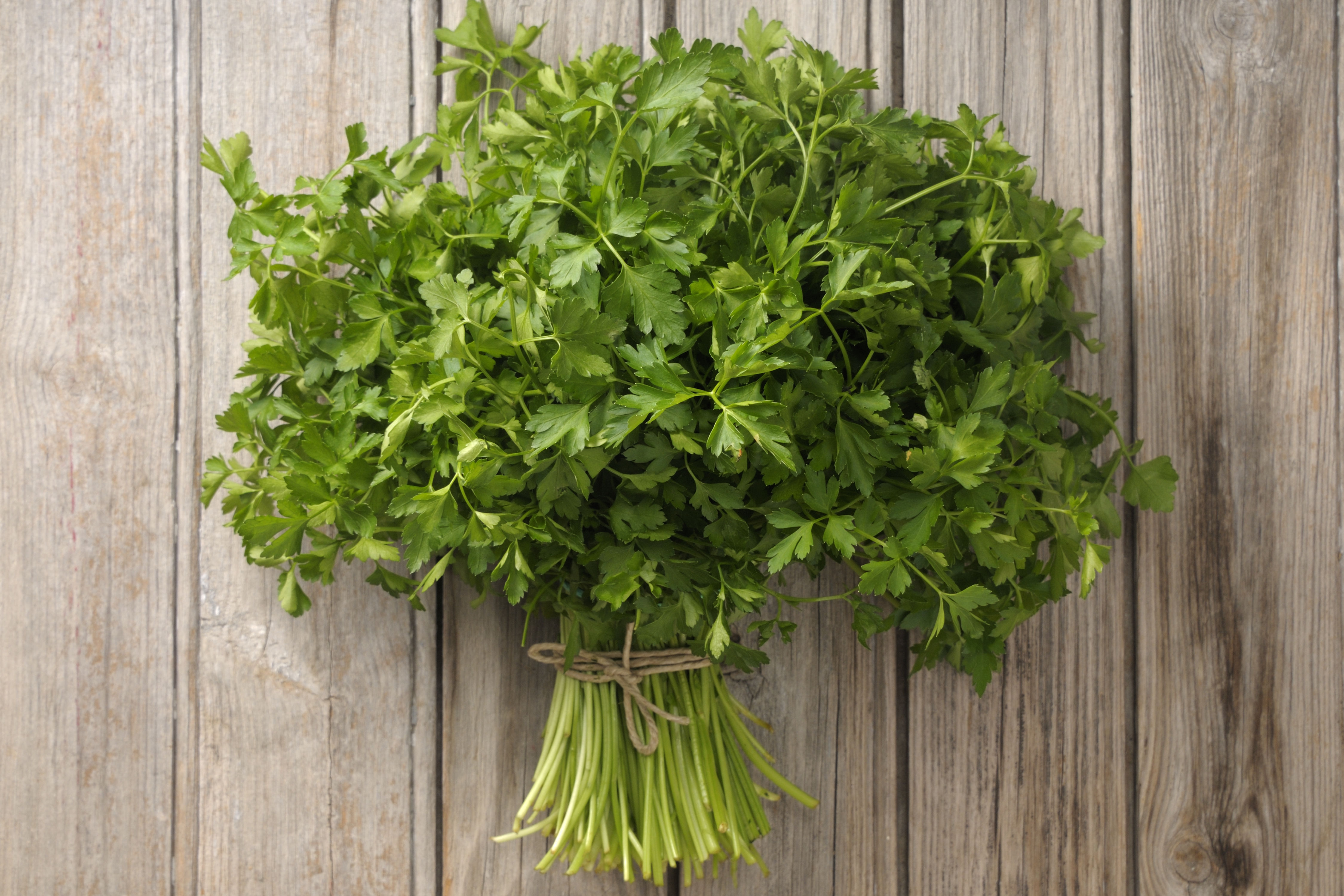 The Best Way To Store Fresh Herbs