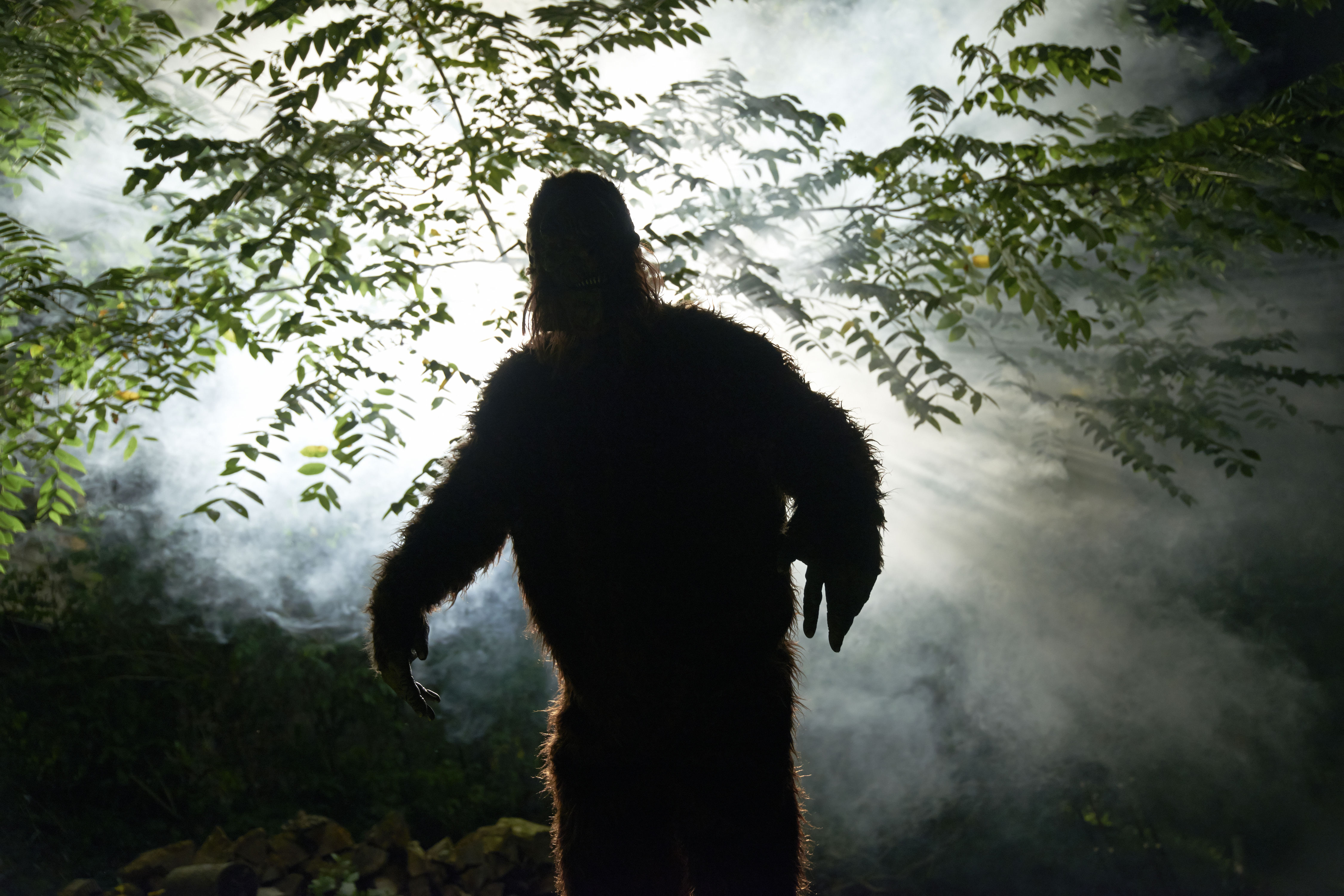 Gatlinburg To Host the First-Ever Smoky Mountain Bigfoot Conference