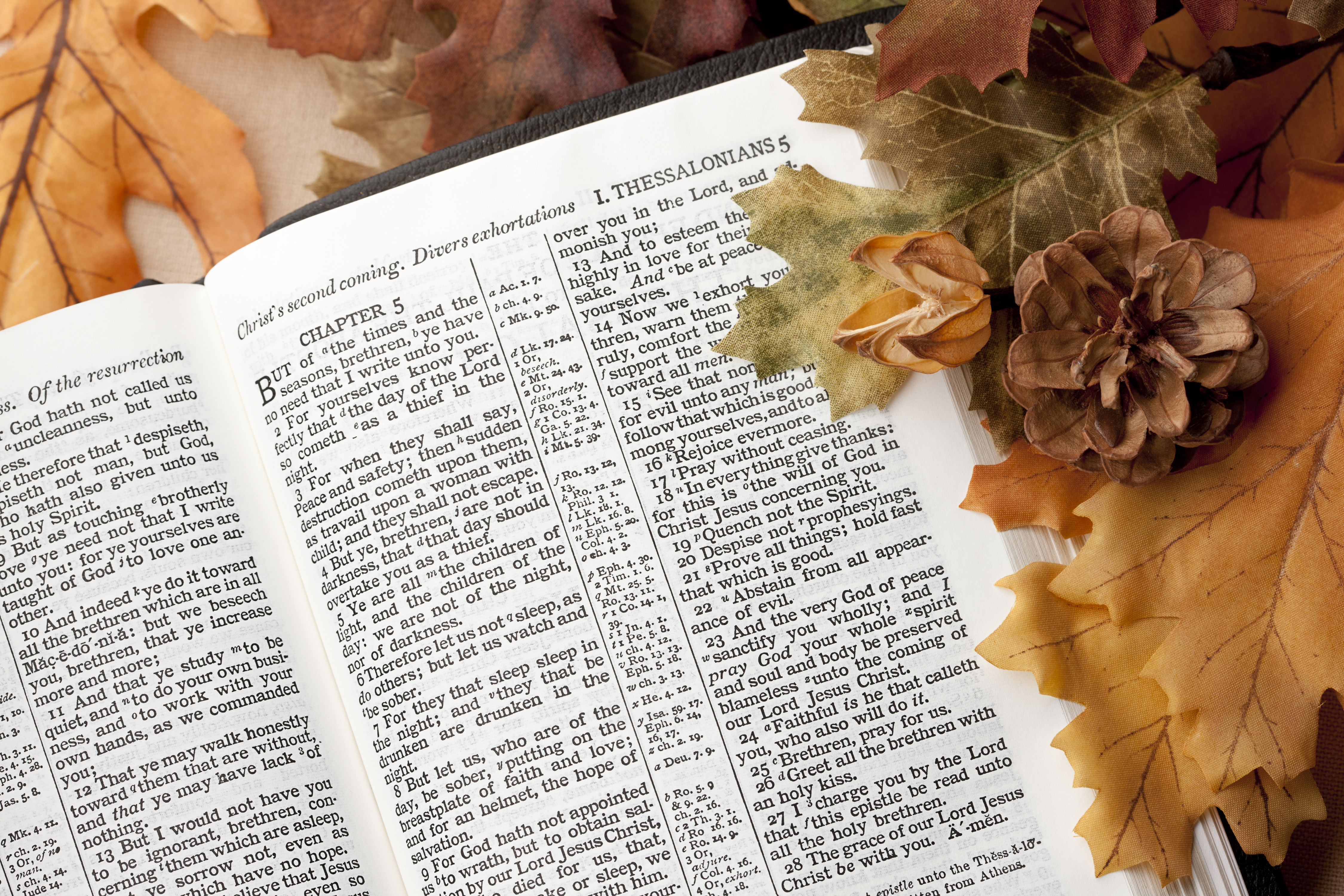 Thanksgiving Bible Verses to Inspire You This Holiday