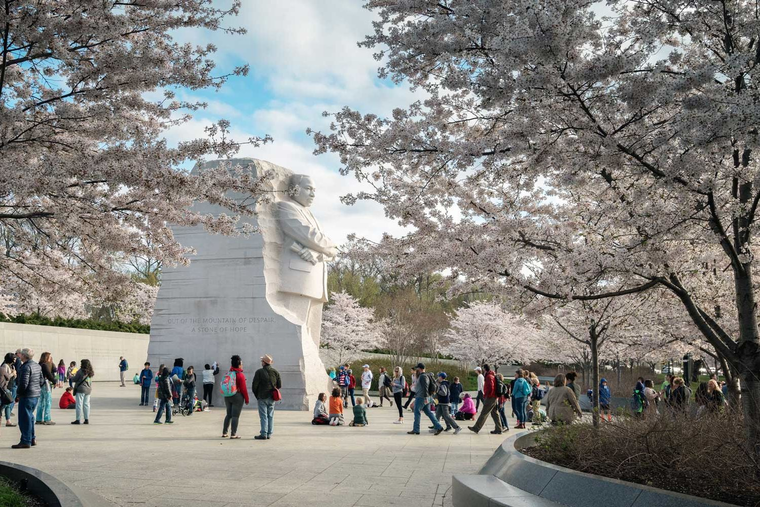 Everything You Need to Know About the 2018 National Cherry Blossom Festival This Spring