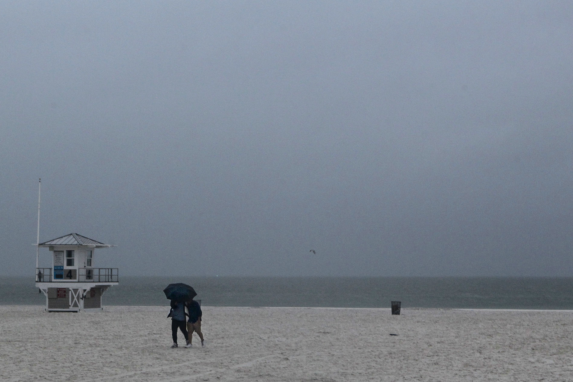 Lightning Strikes Florida Beach Leaving 8 Injured: Report