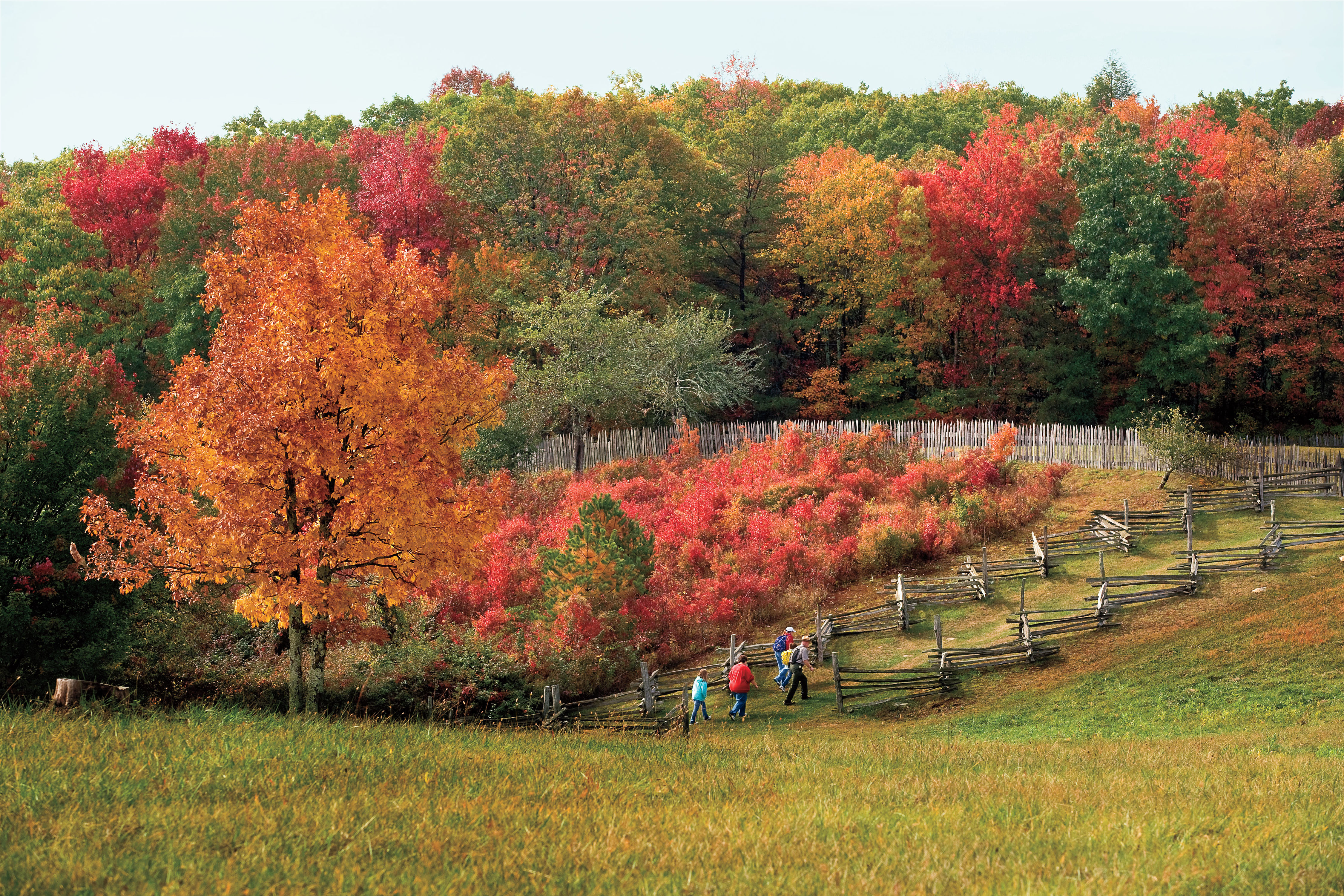 Three Favorite Trips for Fall