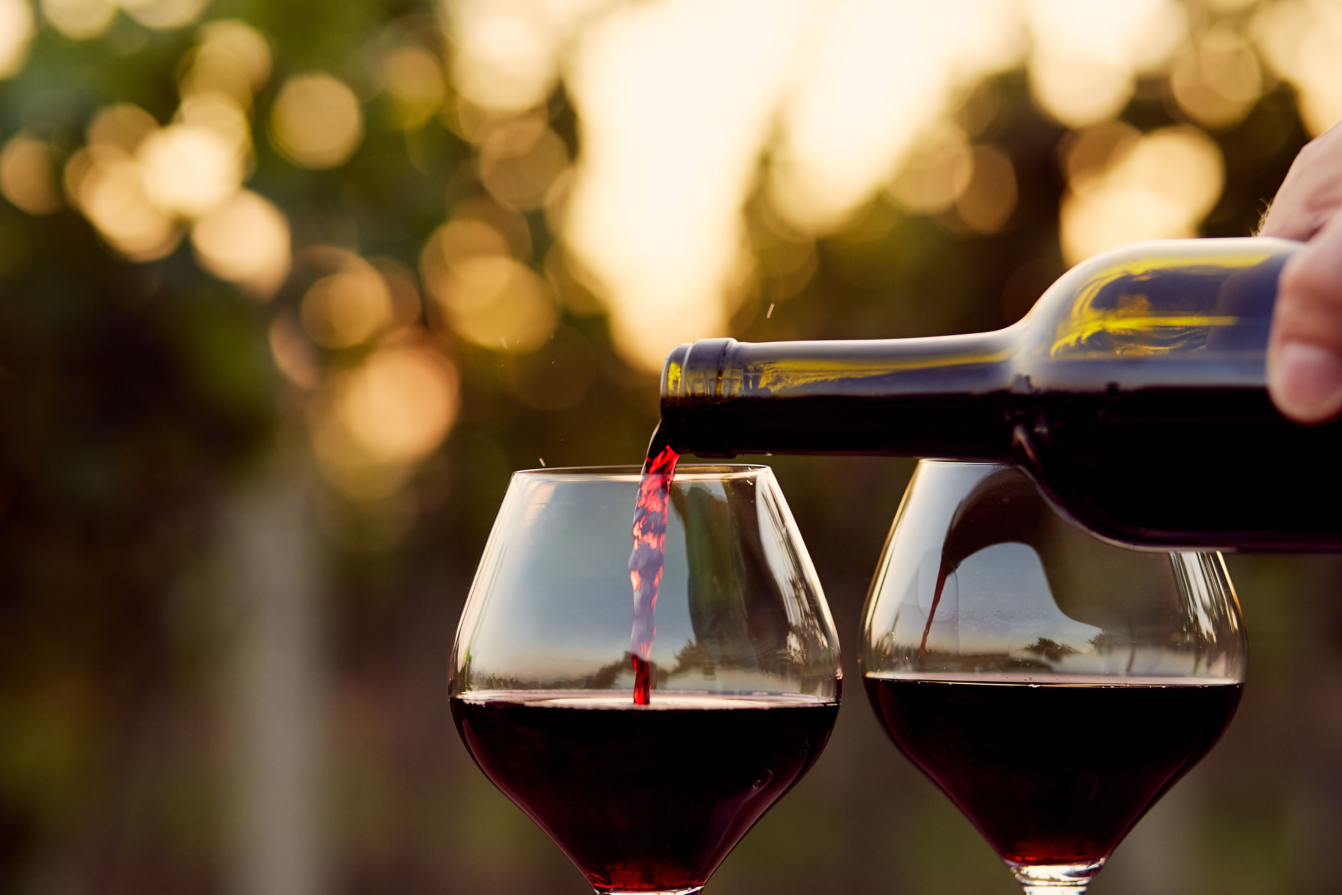8 Health Benefits of Drinking Wine