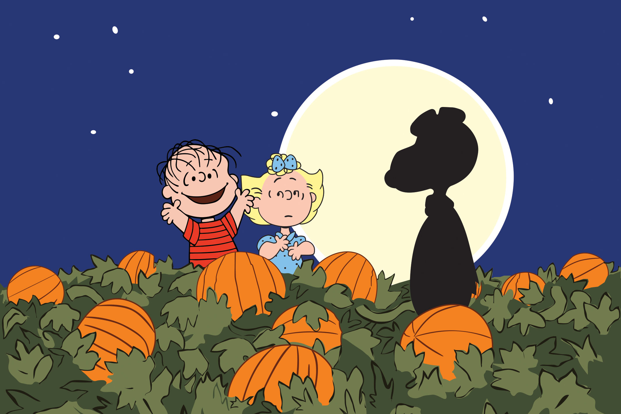 It's the Great Big Corn Maze, Charlie Brown!