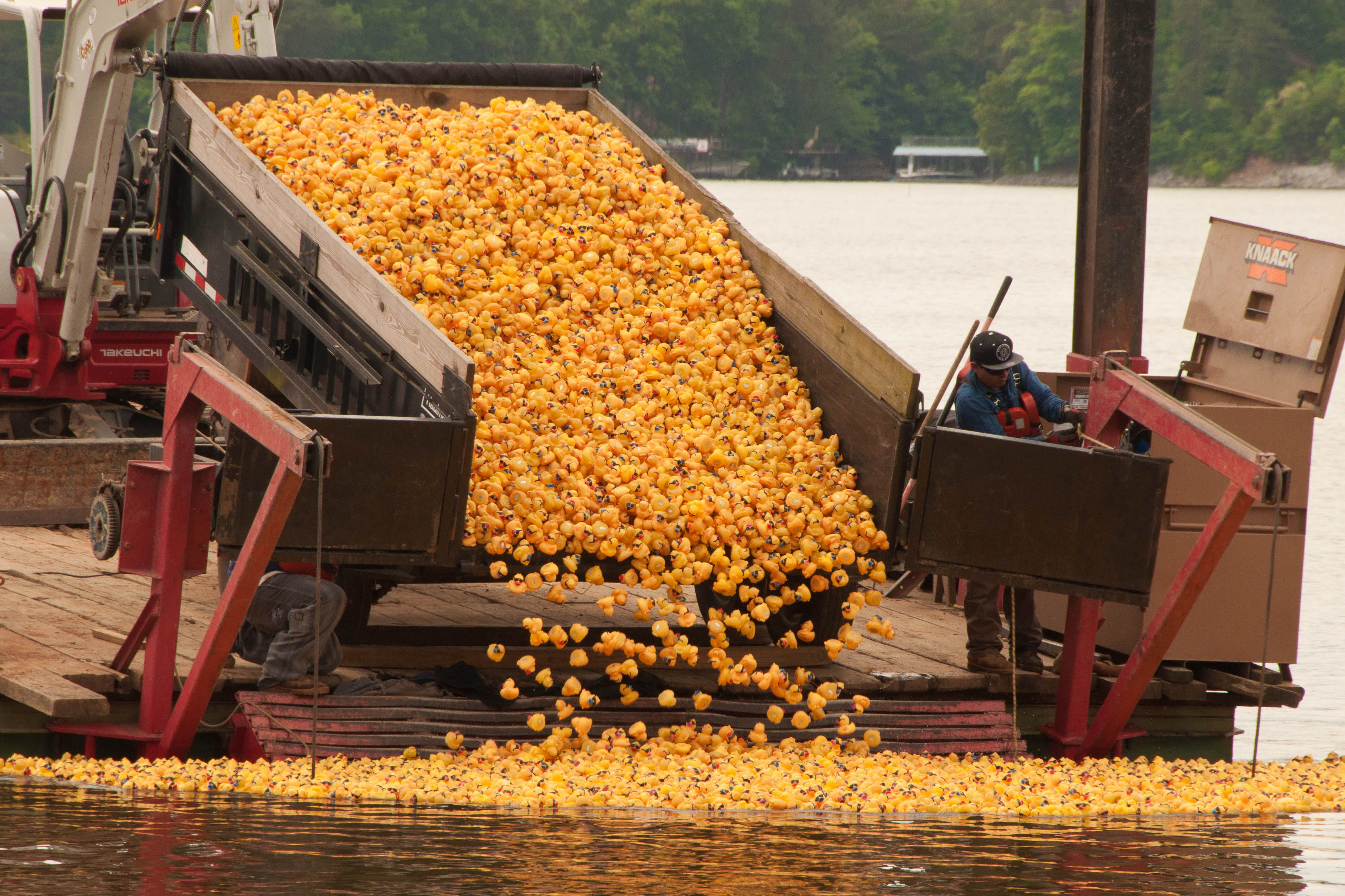 Here's Why You Need to Attend a Rubber Duck Derby