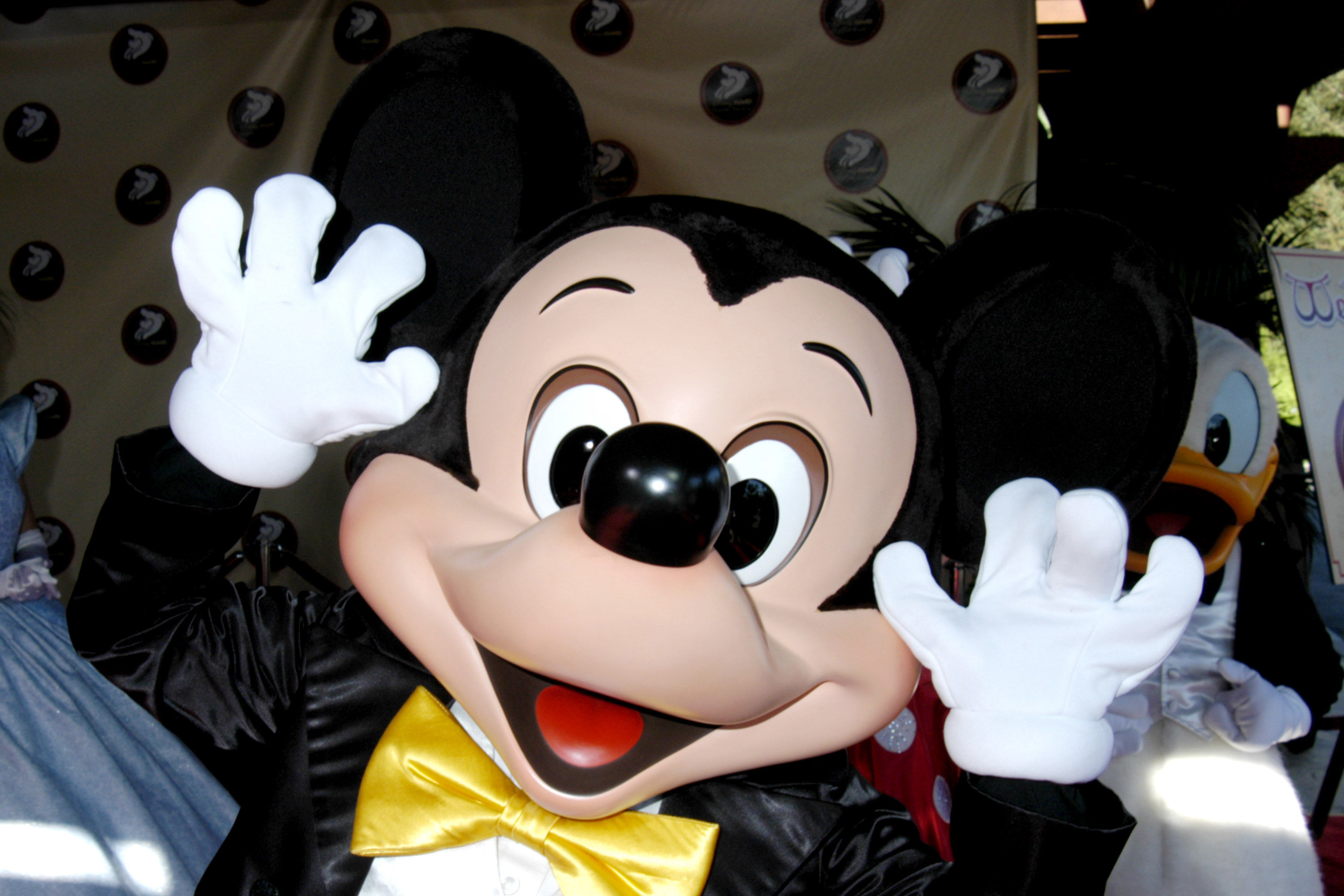 Mickey Mouse Gender Reveal Turns into Surprise Proposal at Disney World