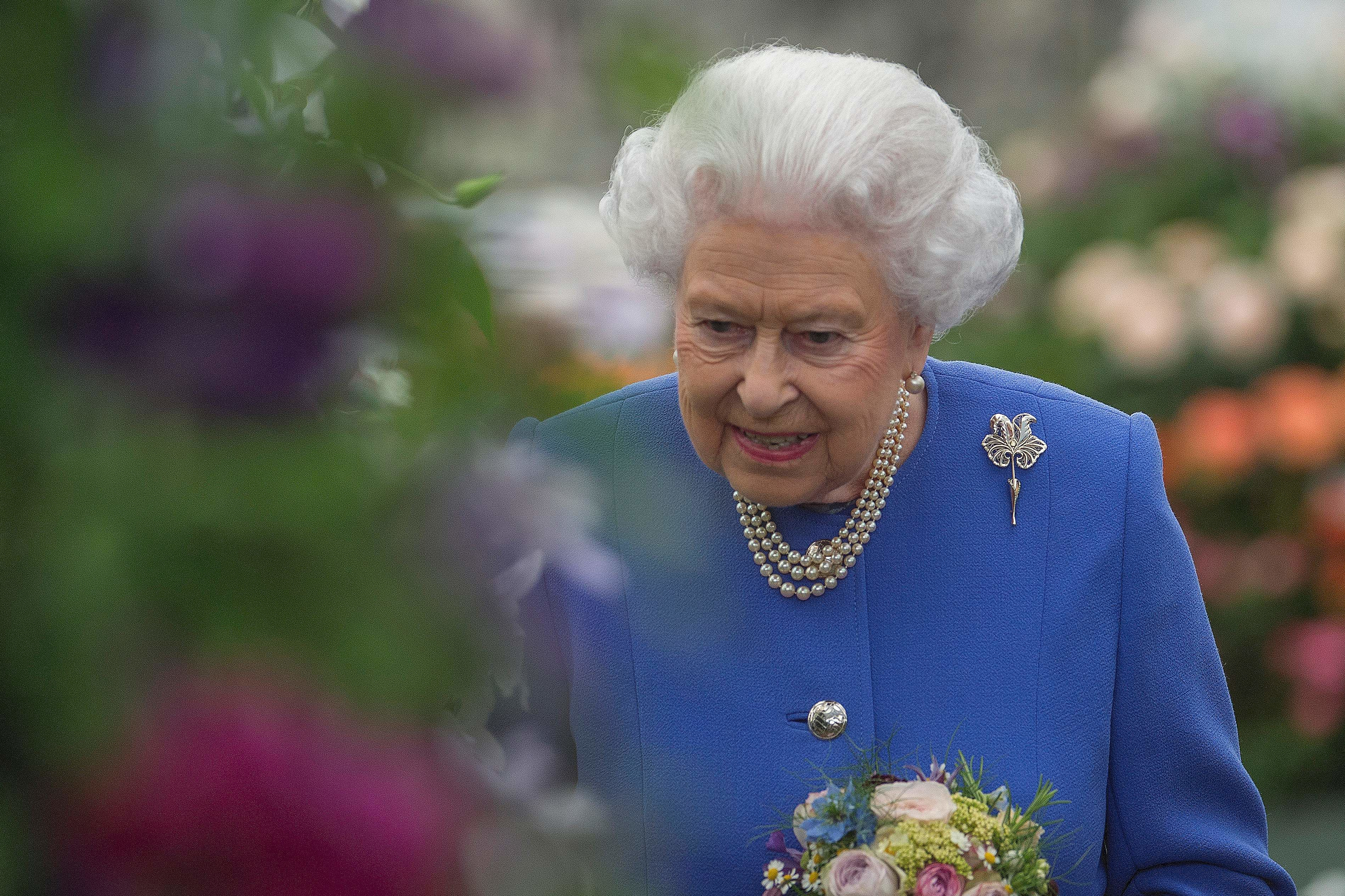 At the Age of 91, The Queen Has Picked up One of Our Favorite Hobbies