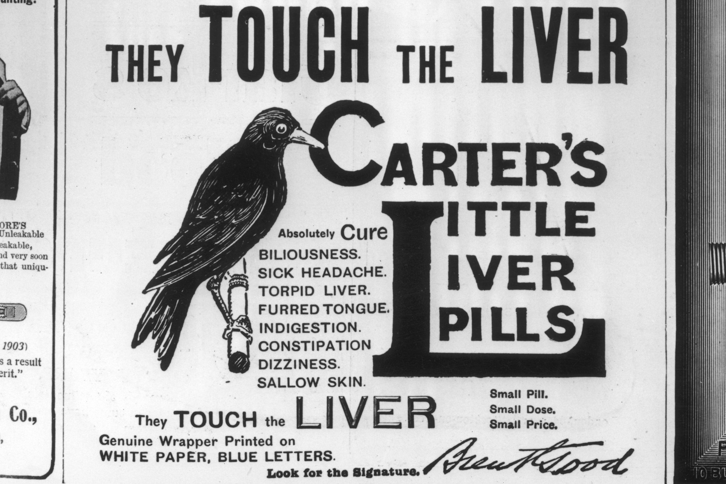The History of Carter's Little Pills
