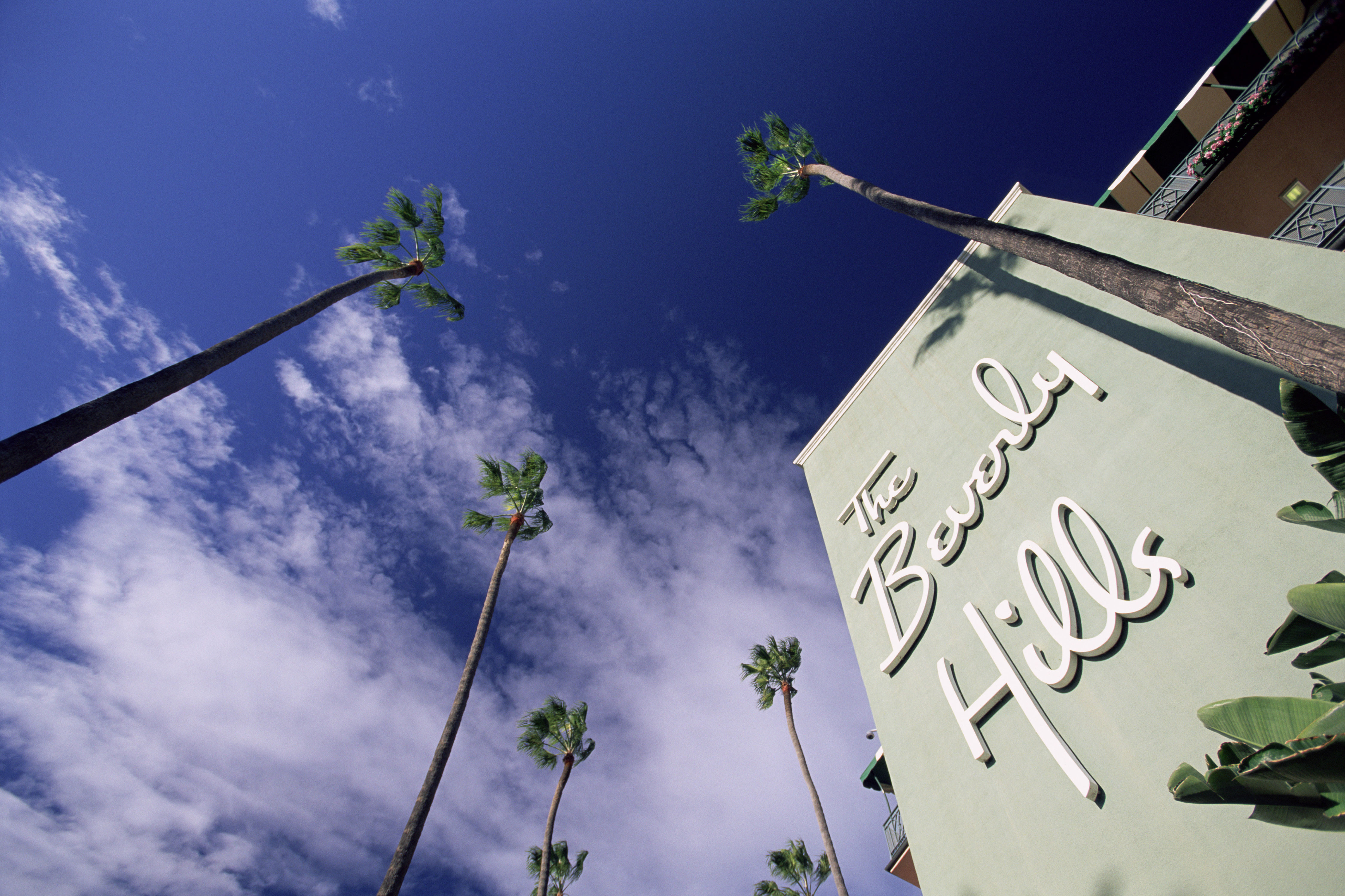 5 Things You Probably Didn't Know About Troop Beverly Hills